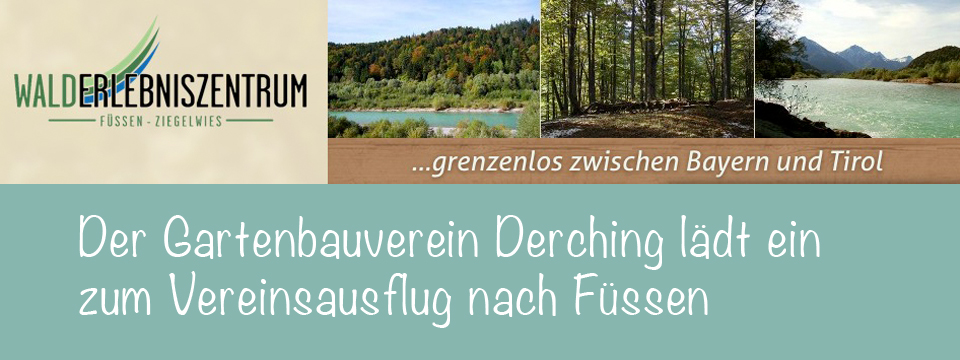 Derchinger Gartenfreunde fahren nach Füssen
